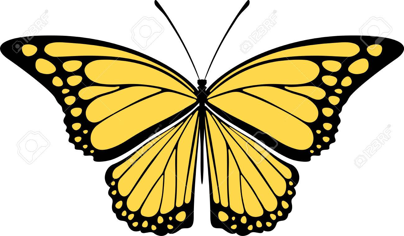 1300x758 2,968 Monarch Butterfly Isolated Stock Vector Illustration