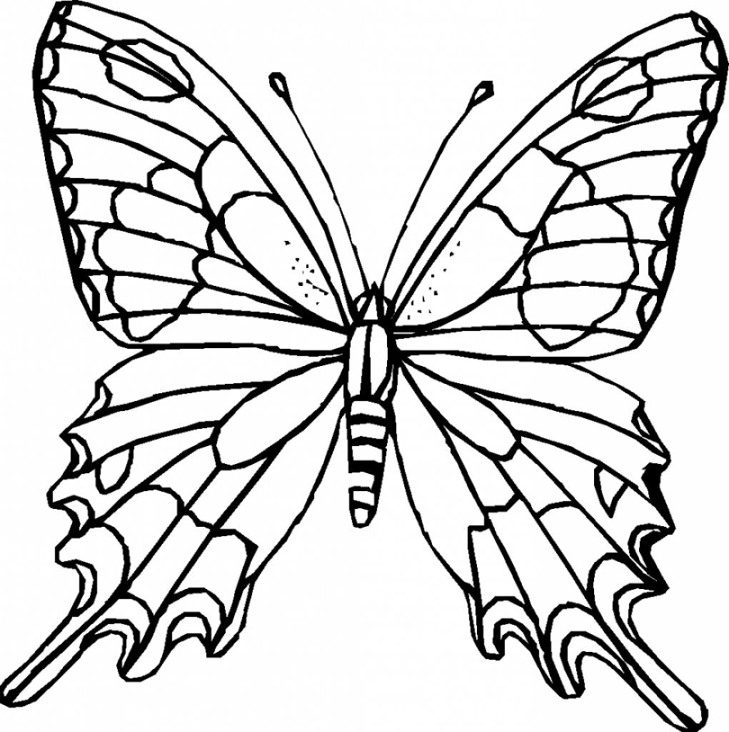 1021x1024 Butterfly Drawing Outline Free Butterfly Stencil Monarch Butterfly