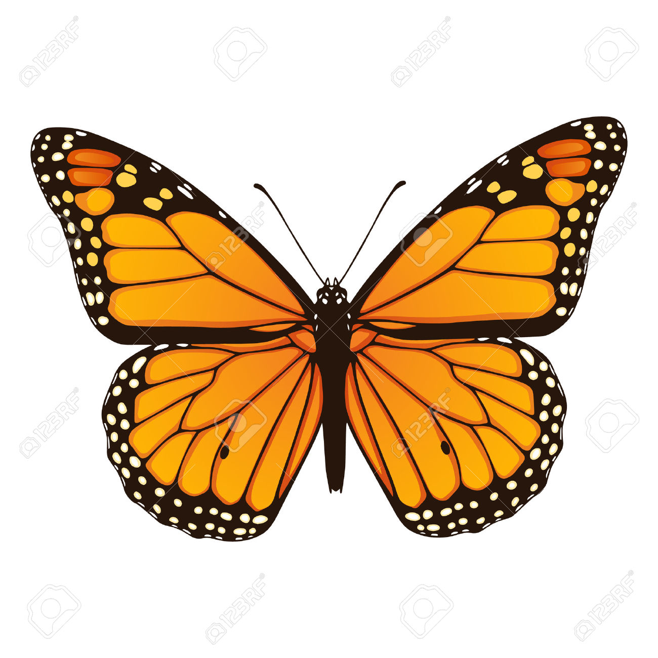 1300x1300 Monarch Butterfly Clipart Drawn