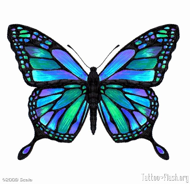 736x714 The Best Butterfly Tattoos Ideas Black