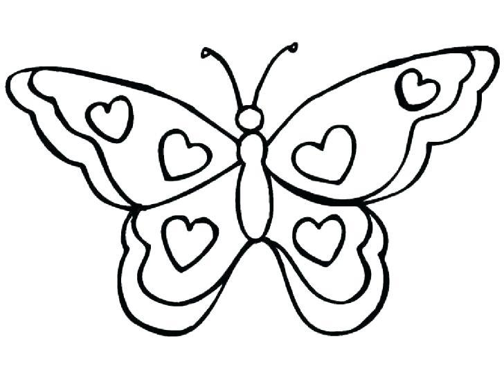 728x545 Butterfly Printout