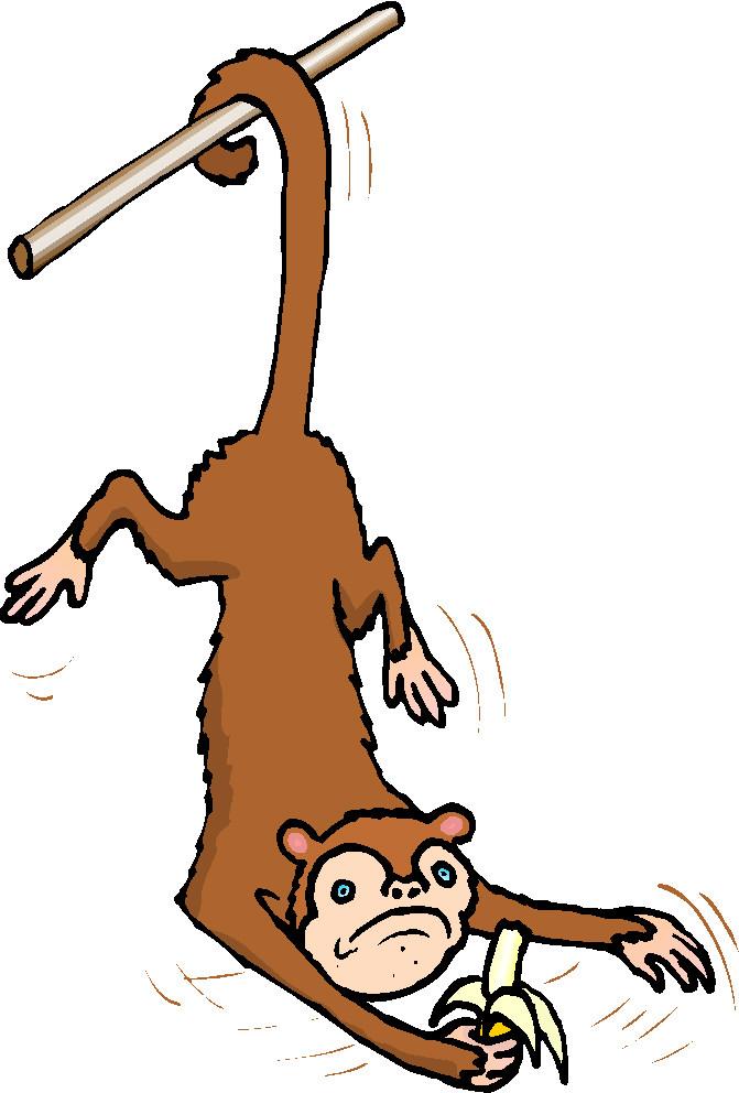 671x992 Monkeys clip art 2