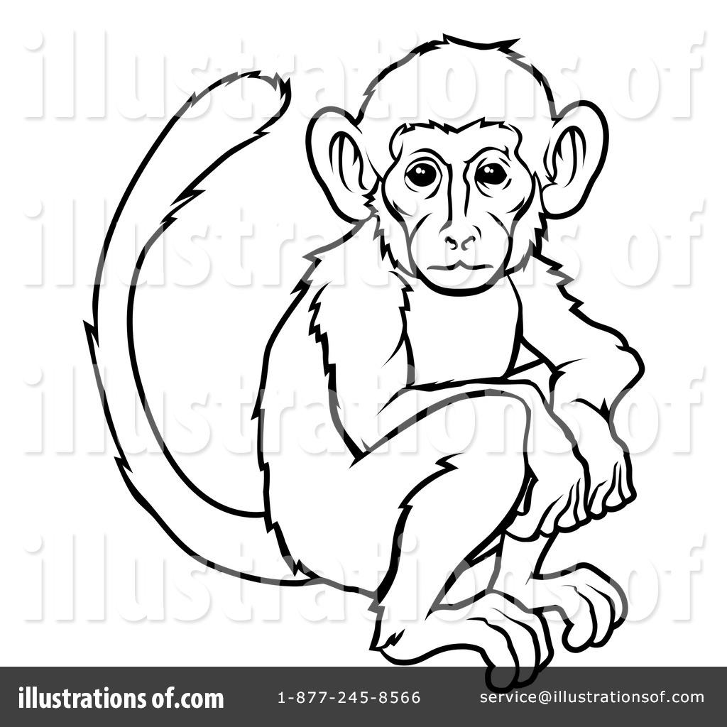 1024x1024 Monkey Clipart