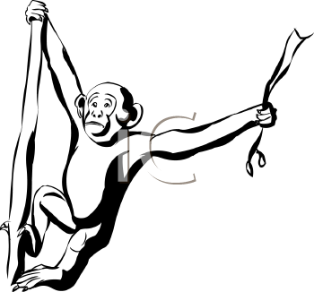 350x326 Chimpanzee clipart black and white