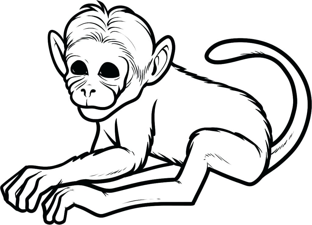 1024x738 Cartoon Monkey Coloring Pages Cute Monkey Coloring Pages Hanging