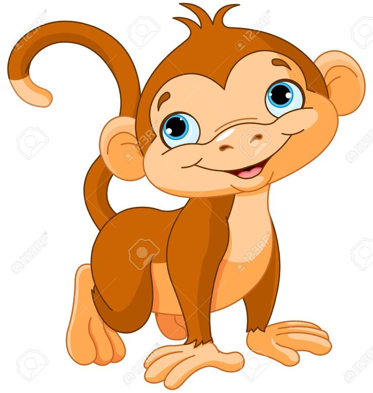 736x777 32 Best Monkeys Images Crafting, Monkey And Pictures