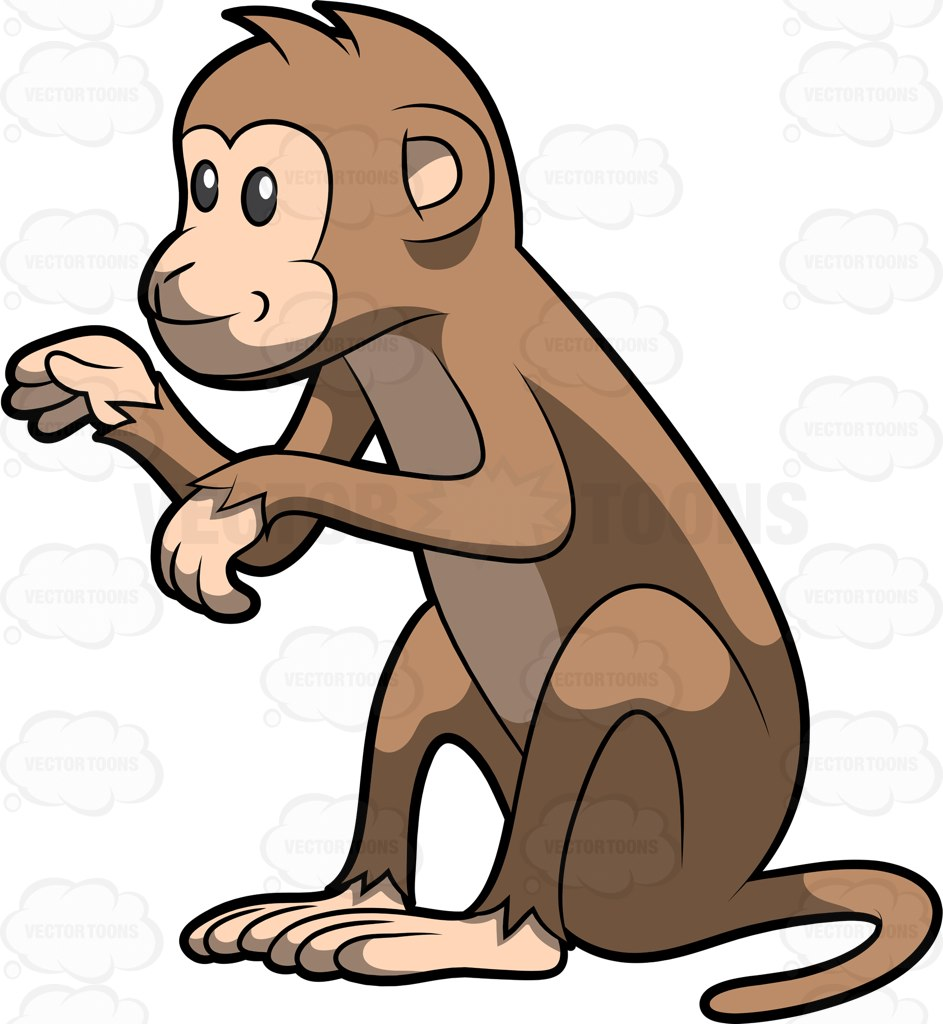 Monkey Picture Cartoon | Free download on ClipArtMag