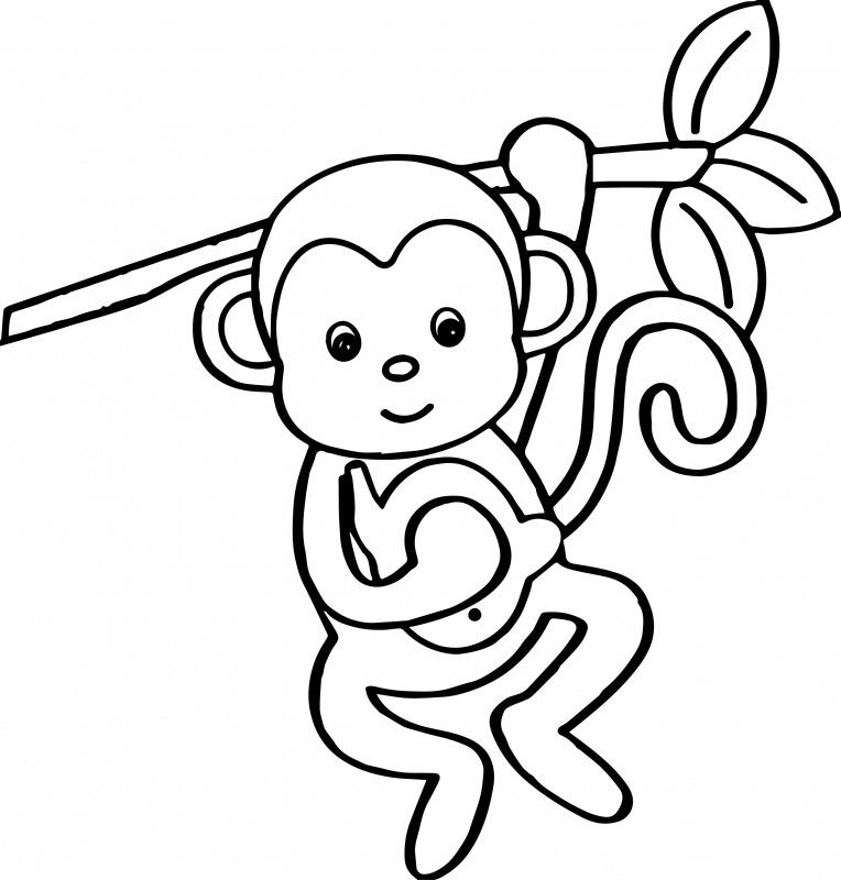 764x800 Collection Of Solutions Cute Monkey Coloring Pages In Letter