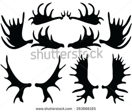 450x380 Moose Clipart Moose Antler