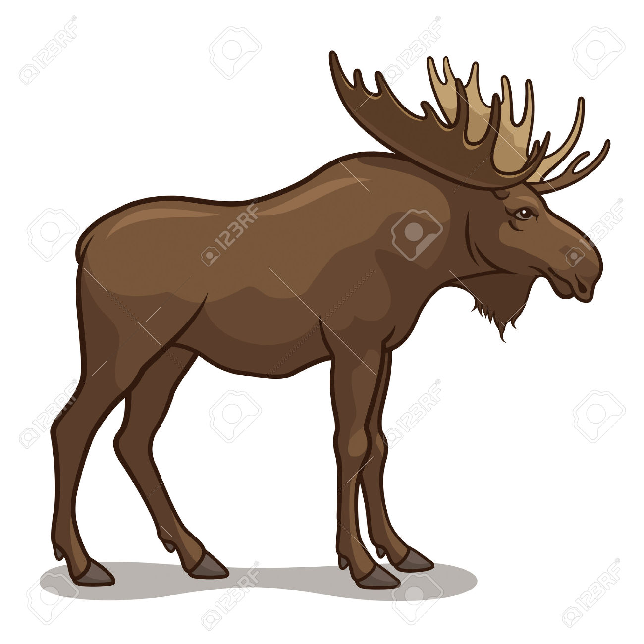 1300x1300 Moose Clipart Realistic Animal