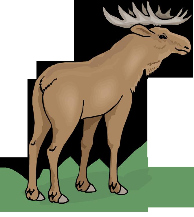 670x750 Top 75 Moose Clip Art