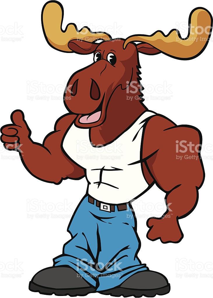 731x1024 Moose Clipart Muscular