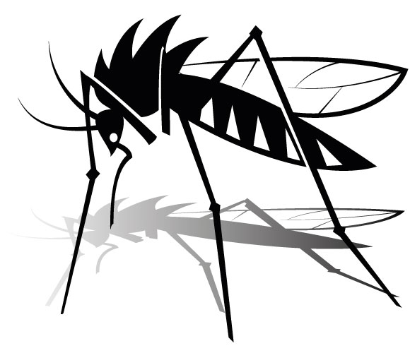 580x500 Mosquito Clipart The Cliparts