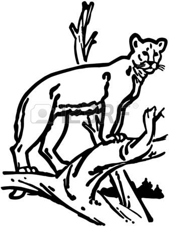 336x450 Mountain Lion Clipart Many Interesting Cliparts
