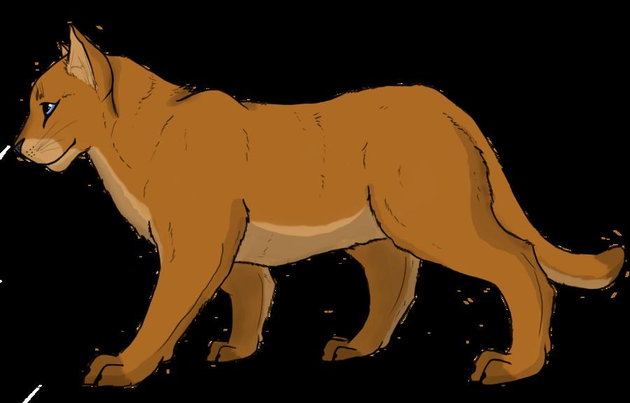 900x576 Mountain Lion Clipart Mountain Lion Cartoon Free Download Clip Art