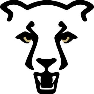 316x316 Filemountain Lion.png