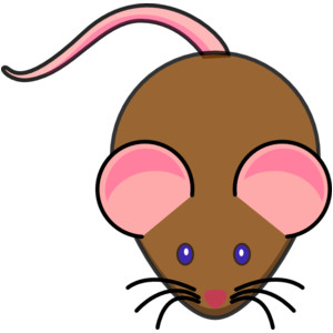 300x300 Field Mouse Clipart