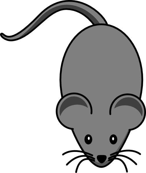 504x599 Mouse Dark Grey Lab Mouse Clip Art Squirrels Mice Acorns