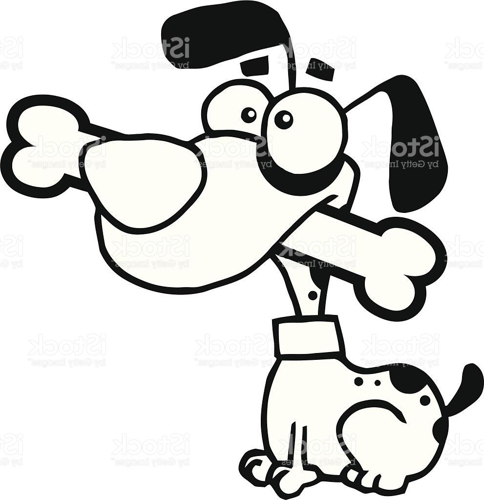 991x1024 Top 10 Black And White Dog Sitting With Bone In His Mouth Vector