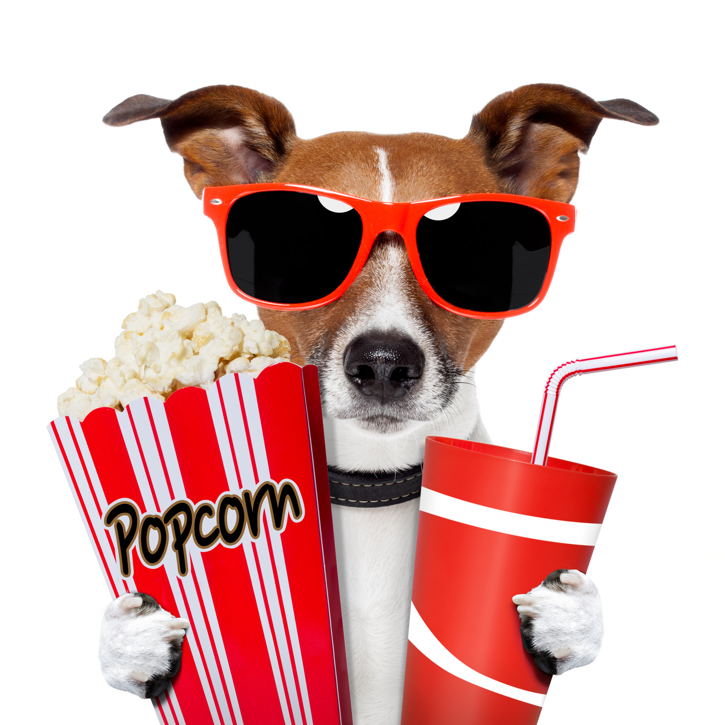 1414x1414 Movie Night Clipart Free Images 4