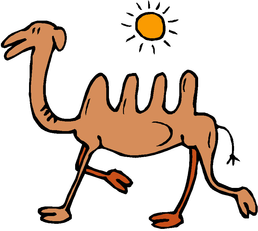 862x772 Camels Clipart Animated Gif