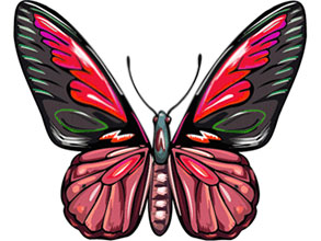 293x220 Free Animated Butterfly Clipart