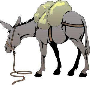 300x285 Mule Clip Art
