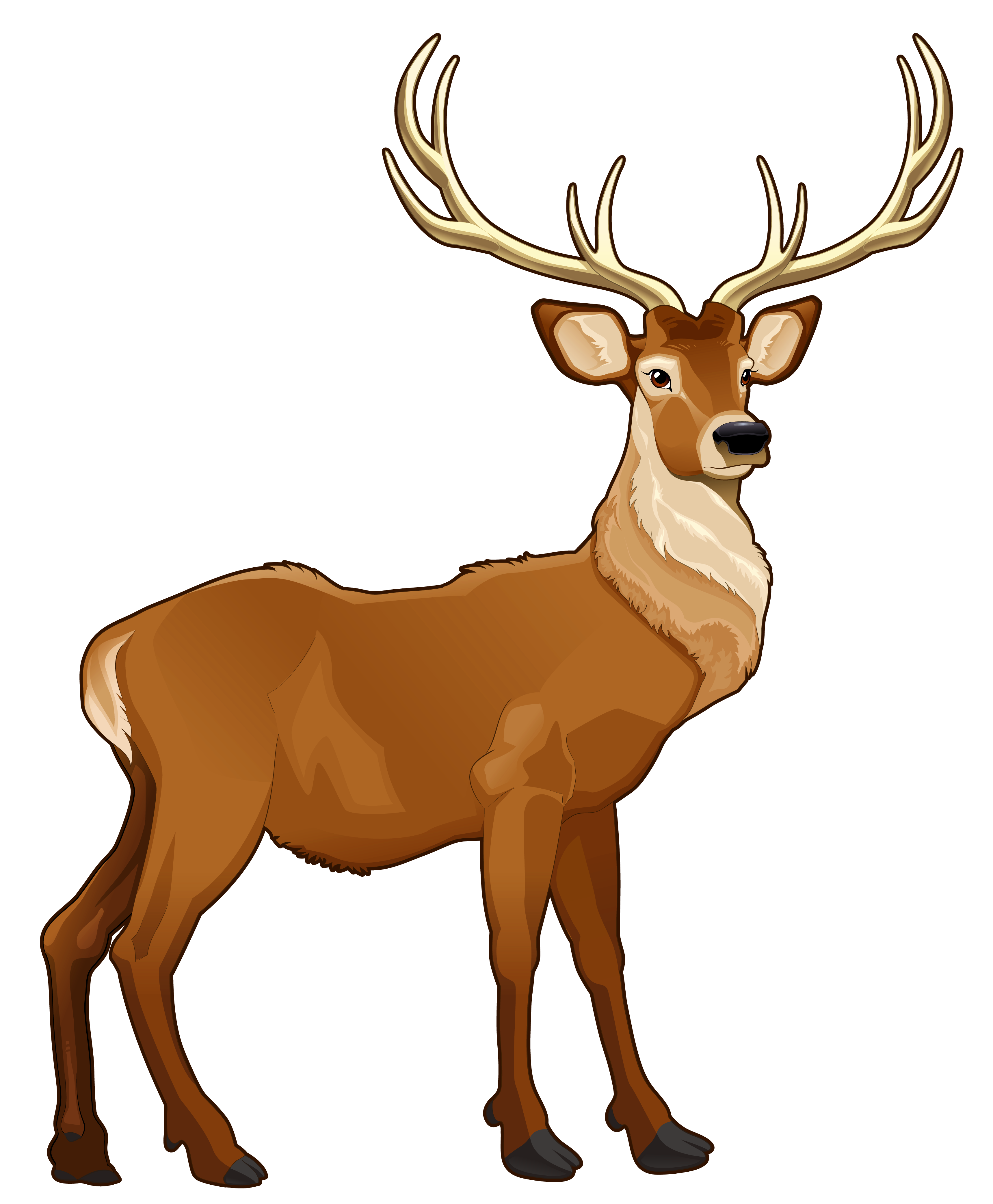 3438x4168 Top 87 Reindeer Clip Art