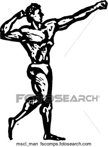 345x470 Building Muscle Clipart Royalty Free. 4,482 Building Muscle Clip