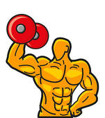 151x170 Rate Clipart Muscular Strength