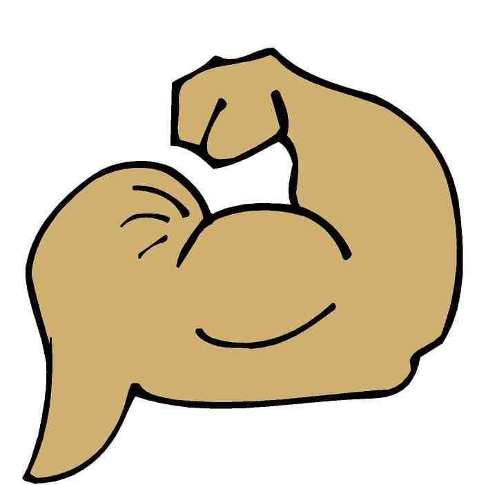 720x702 Muscles Clip Art Clipart Panda
