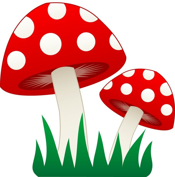 736x748 Ideas About Mushroom Clipart