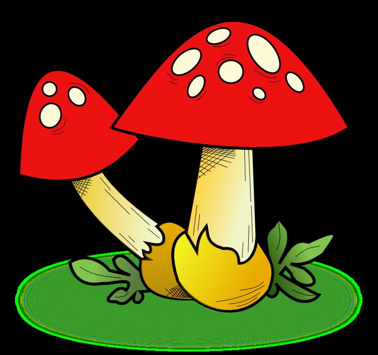 755x709 Mushroom clip art