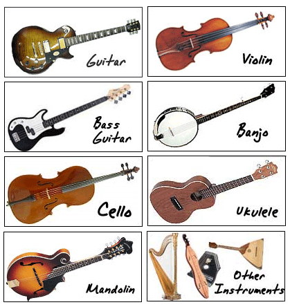 419x444 Images String Instruments With Names