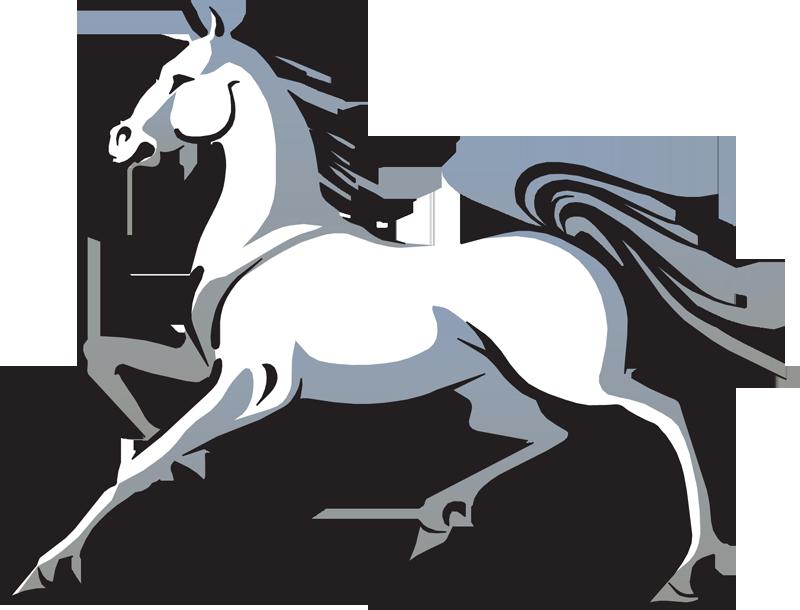 800x610 Stallion Clipart White Horse