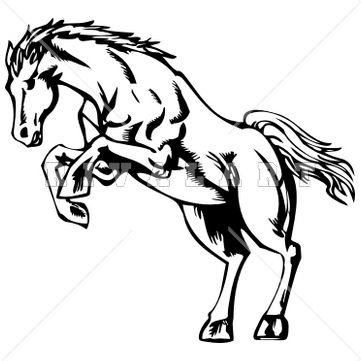 361x361 47 Best Beat A Dead Horse Tattoo Images Horse