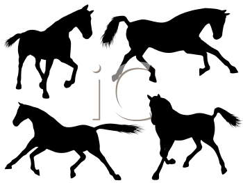 350x263 Royalty Free Stallion Clip Art, Horse Clipart