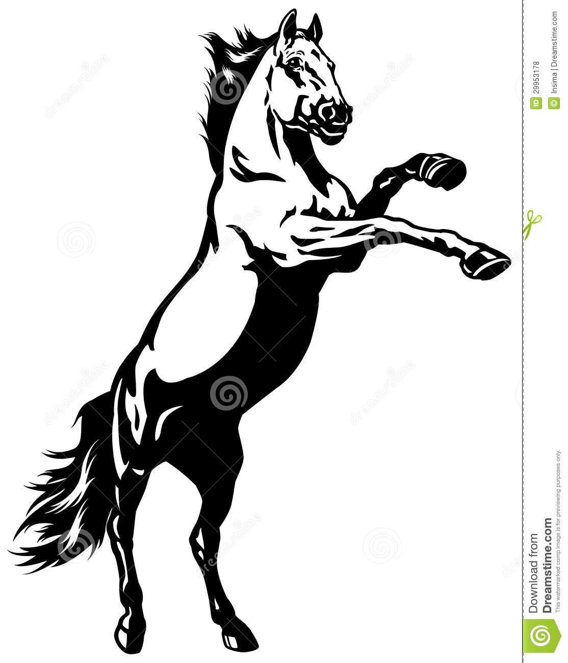 1114x1300 Horse Pictures Free