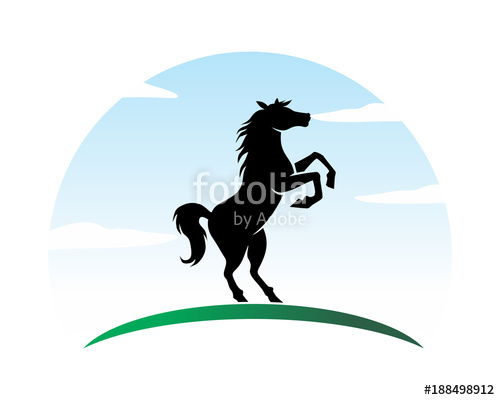 500x400 Black Stallion Horses Stallion Mustang Mare Silhouette Image