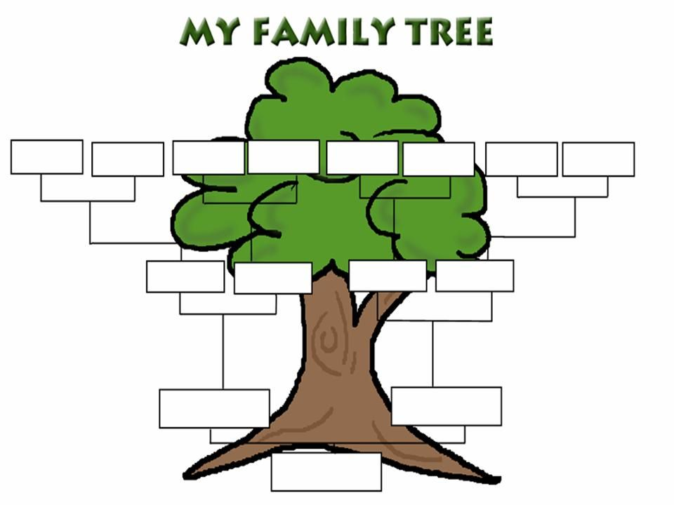 My family tree free download best my family tree on for Plain family tree template