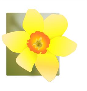 285x299 Daffodil Clip Art Free Vector 4vector