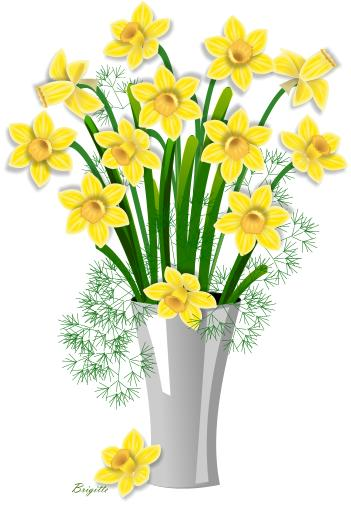 351x506 Daffodil Clipart Narcissus Flower