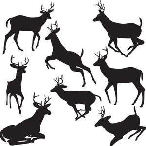 300x300 Black Deers Vector Download Cricut Svg Files