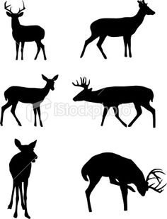 236x309 Free Silhouette Patterns Elk Silhouette Patterns Httpall Free