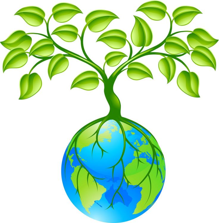 736x751 Nature Clipart Earth
