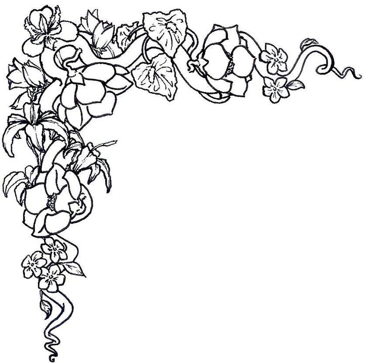 Magnificent Rose Coloring Pages Border Pictures - Coloring Ideas ...