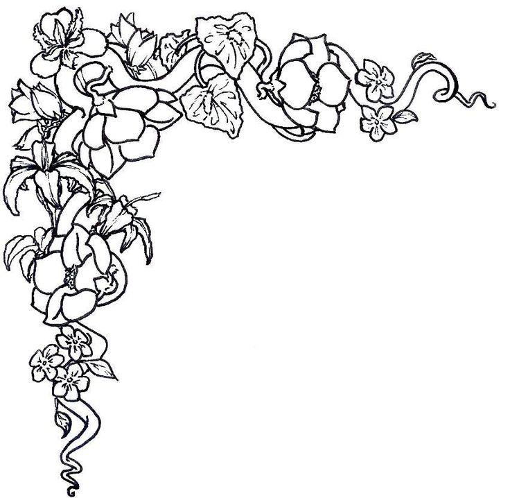 736x718 Gladiolus Flower Clip Art