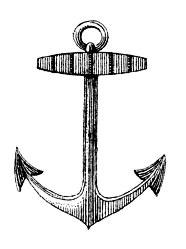 736x985 Anchor Clipart, Suggestions For Anchor Clipart, Download Anchor