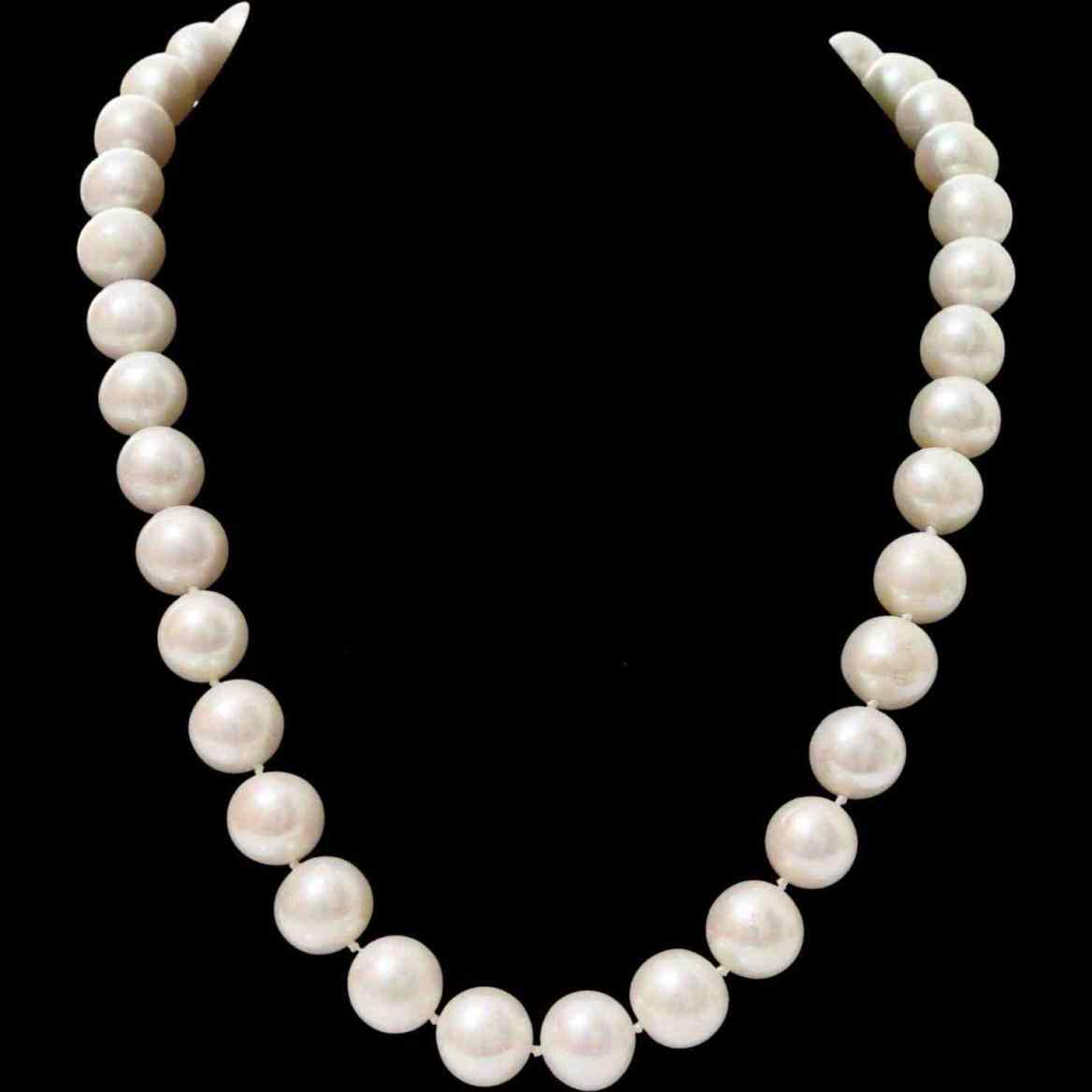 1168x1168 Pearl Necklace Clipart