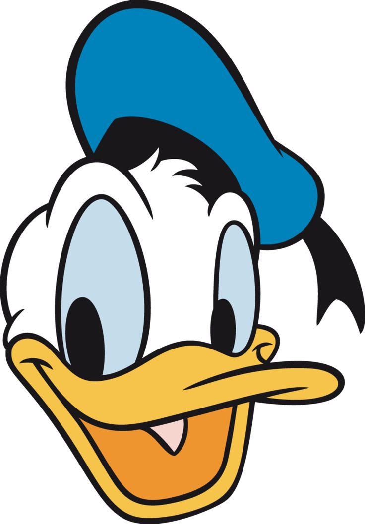 64342f571cc8b 736x1057 Best Donald Duck Ideas Donald Duck Drawing